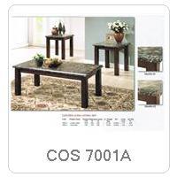 COS 7001A